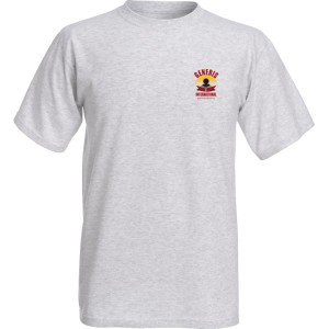 generis international gray t-shirt chect logo